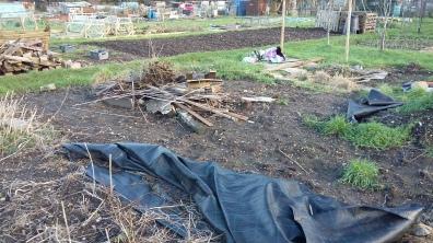 The bonfire pile