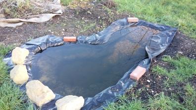 Pond needs finishing off!
