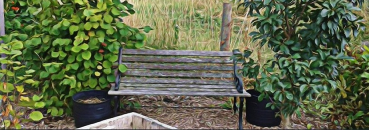 allotment bench3