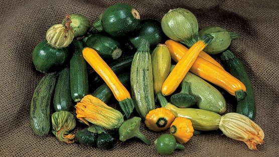 rhs courgettes