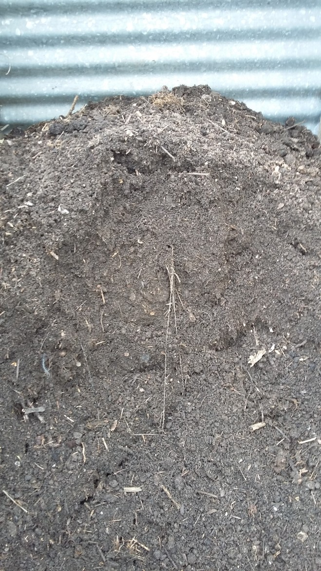 plot-2-finished-compost-201604234
