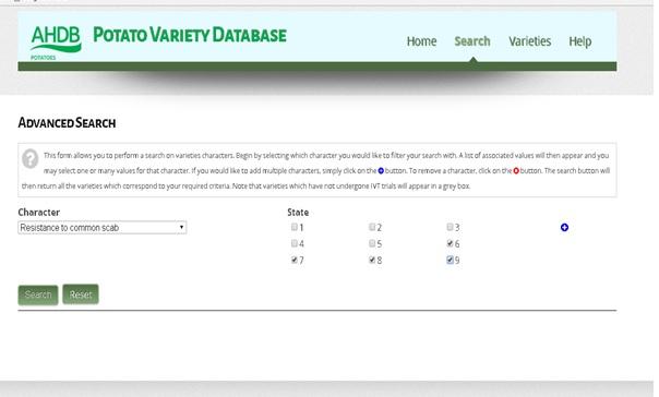 adhb-database-1