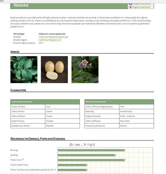 adhb-database-4