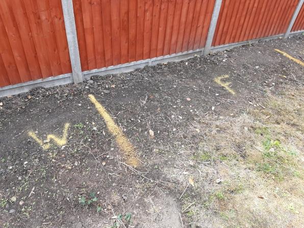 W=walkway, F=fruit cage, C=compost bins